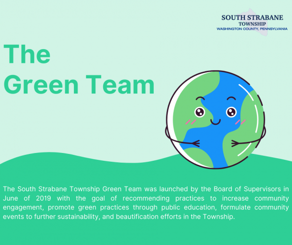 Green Team Infographic
